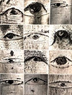 Aspen Eyes Collage