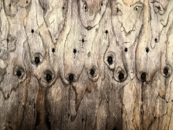 Woodfaced